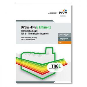 DVGW-TRGE G 800-2 Thermische Industrie